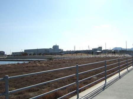 吉野川マラソントレーニング コース 029.JPG