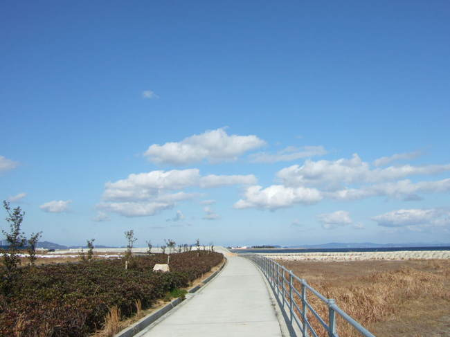 吉野川マラソントレーニング コース 037.JPG