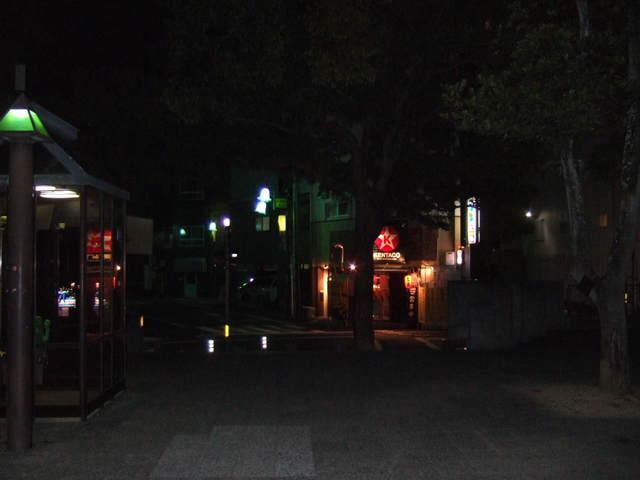 新町川ひかりプロムナード 夜編 022.JPG